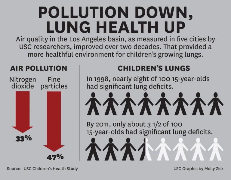 PollutionLungHealth2-768x600