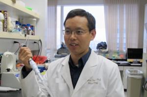 Pinghui Feng, PhD